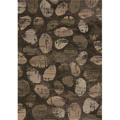Macedon Cobblestone Brown Area Rug Rug Size: 53 x 77