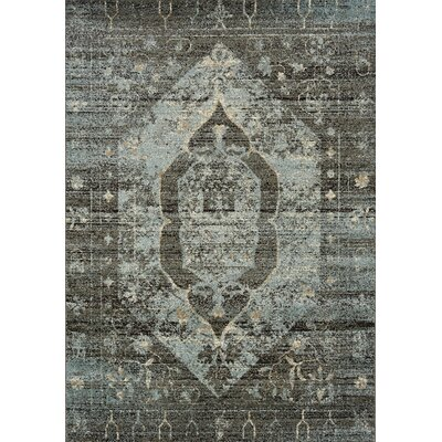 Angelita Steel Distressed Traditional Hexagon Taupe/Gray Area Rug Rug Size: 53 x 77