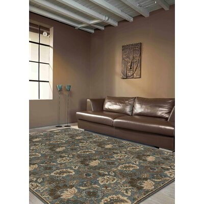 Ahoghill Floral Taupe/Blue Area Rug Rug Size: 710 x 106