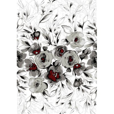 Louisa Rose White/Gray Area Rug Rug Size: 53 x 77