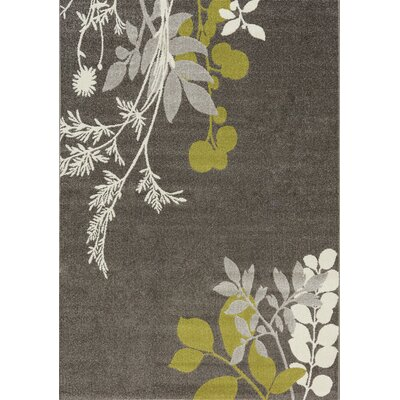 Mucklen Plant Gray Area Rug Rug Size: 311 x 57