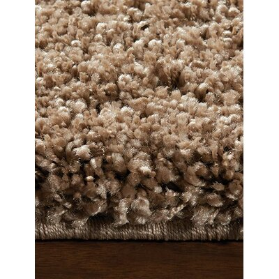Barry Luxurious Light Beige Shag Area Rug Rug Size: 53 x 77