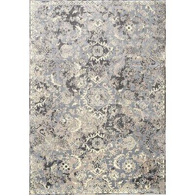 Antika Gray Area Rug Rug Size: 67 x 910