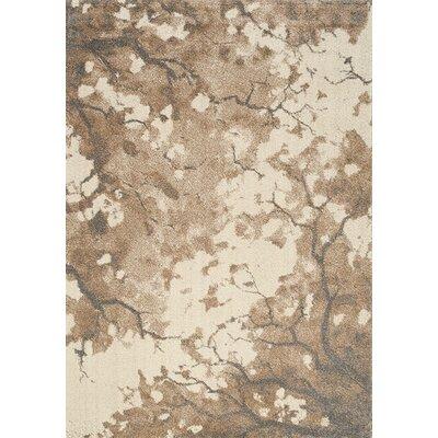 Aubuchon Sepia Area Rug Rug Size: 53 x 77