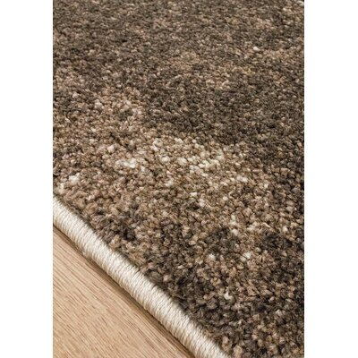 Esqueda Cream/Brown Area Rug Rug Size: Rectangle 7'10