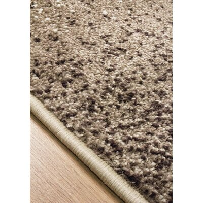 Britton Brown/Tan Area Rug Rug Size: Rectangle 710 x 106