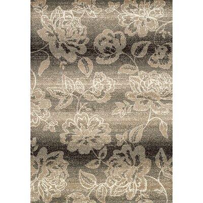 Monterrey Brown/Taupe Area Rug Rug Size: 710 x 106