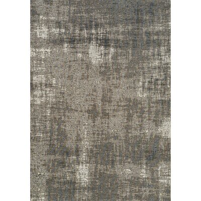 Emory Gray Area Rug Rug Size: Rectangle 51 x 77