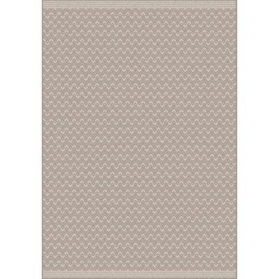 Pawling Brown Area Rug Rug Size: 53 x 77