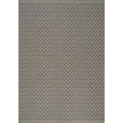 Pawling Gray/Tan Area Rug Rug Size: 53 x 77