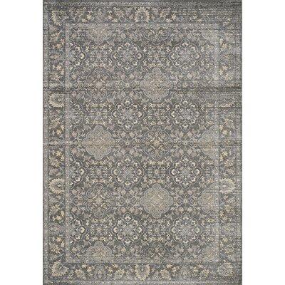 Falmer Kaleidoscope Gray Area Rug Rug Size: 53 x 77