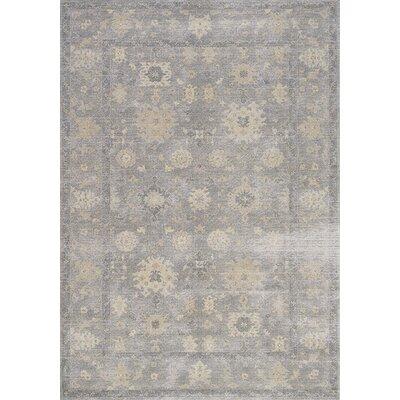 Falmer Gray/Beige Area Rug Rug Size: 53 x 77