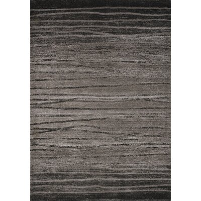 Macedon Black/Grey Birch Stripes Rug Rug Size: 53 x 77