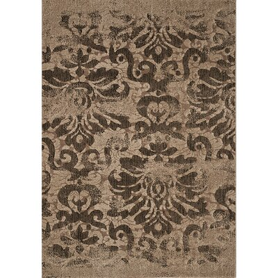 Macedon Brown/Beige Distressed Floral Rug Rug Size: 710 x 1010