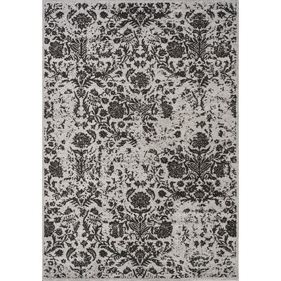 Potter Black/Gray Area Rug Rug Size: 710 x 106