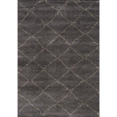 Jannie Charcoal/Light Gray Area Rug Rug Size: 53 x 77