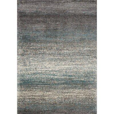 Bunderberg Gray/Blue Area Rug Rug Size: 710 x 1010