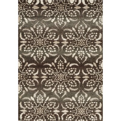 Ciera Brown/Cream Area Rug Rug Size: 53 x 77