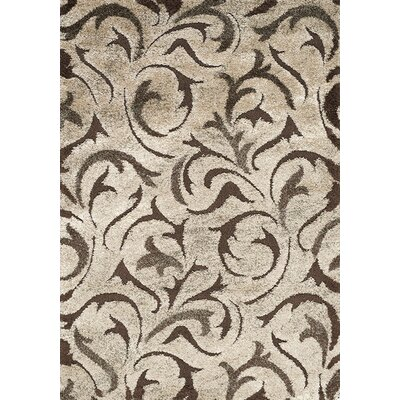 Besser Brown/Cream Area Rug Rug Size: 53 x 77