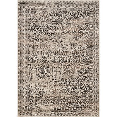 Billerica Gray/Brown Area Rug Rug Size: 710 x 1010