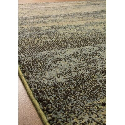 Greve Green/Gray Area Rug Rug Size: Rectangle 53 x 77