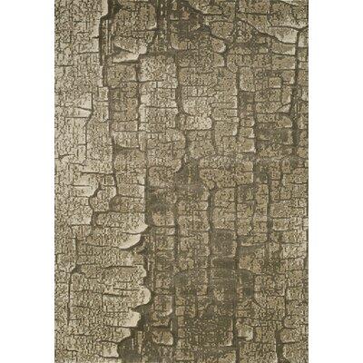 Elva Gray Area Rug Rug Size: 53 x 77