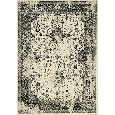 Kavia Black/Cream Area Rug Rug Size: 67 x 96