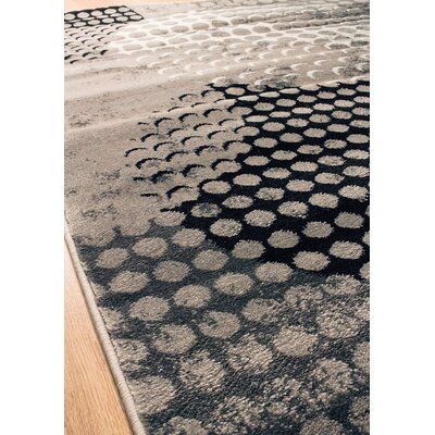 Salem Grey/Cream Area Rug Rug Size: 27 x 411