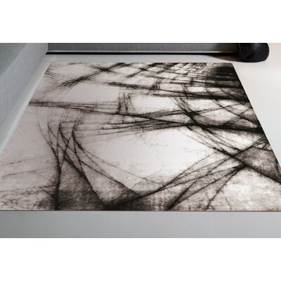 Arden Black/White Area Rug Rug Size: Rectangle 28 x 411
