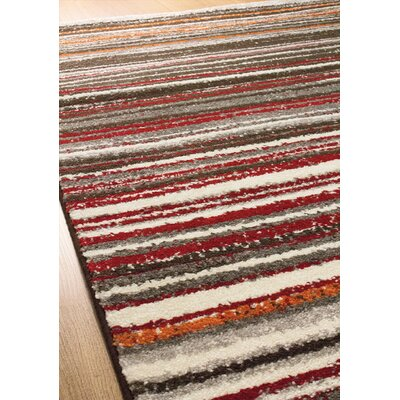 Lyme Cords Area Rug Rug Size: 710 x 1010