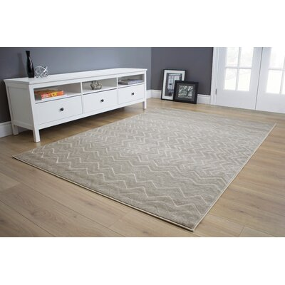 Little Zig Zag Gray Area Rug