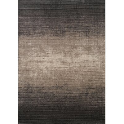 Marquette Resolution Faded Brown Area Rug Rug Size: 57 x 710