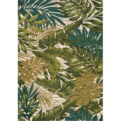 Anwen Botanical Garden Green Outdoor Area Rug Rug Size: 53 x 77