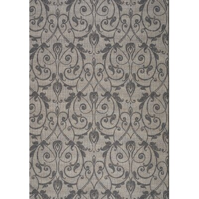 Jamie Traditional Floral Vine Outdoor Gray Area Rug Rug Size: 80 x 112