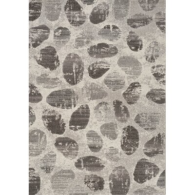 Macedon Stone Path Gray Area Rug Rug Size: 53 x 77