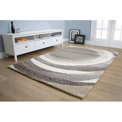 Kellan Downward Spiral Gray Area Rug Rug Size: 53 x 77