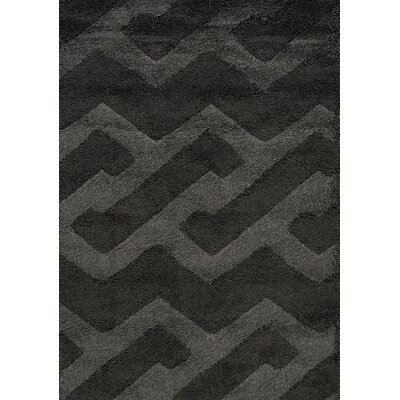 Nataly Maze Luxurious Shag Black Area Rug Rug Size: 53 x 77