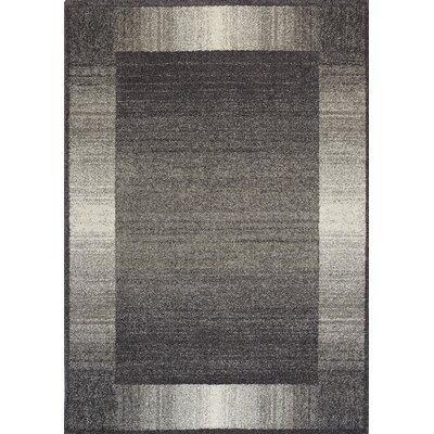 Aubuchon Grey Almandy Area Rug Rug Size: 53 x 77