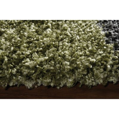 Barry Luxurious Green Area Rug Rug Size: 53 x 77