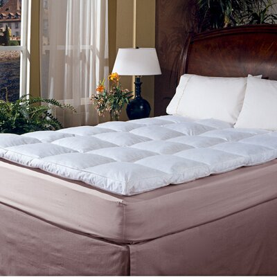 233 Thread Count Cotton Cover Featherbed Topper Size: Full