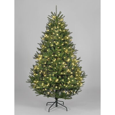 Hometime Snowtime 6.3' Green Pre-Lit Boston Spruce Artificial Christmas Tree with 700 Warm White LEDs