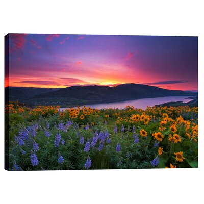 "Paradise Garden By Jesse Estes Photographic Print On Wrapped Canvas Size: 26"" H X 40"" W"