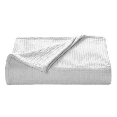 Coast Cotton Blanket Size: Full/Queen, Color: White
