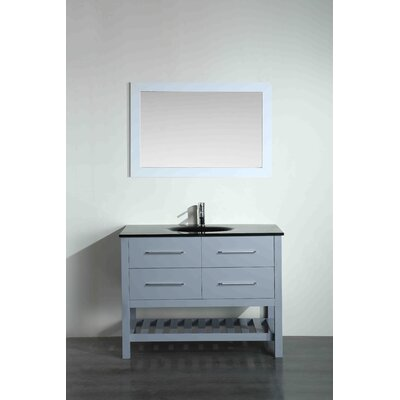 43.3 Single Bathroom Vanity Set with Mirror Base Finish: Gray