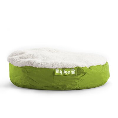 Big Joe SmartMax Pet Bed Size: Large (36 L x 36 W), Color: Lime