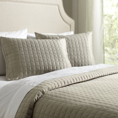 Cary Quilt Set Size: King, Color: Putty