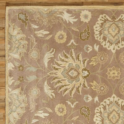 Phoebe Hand Tufted Wool Capuccino Rug Rug Size: Rectangle 76 x 96