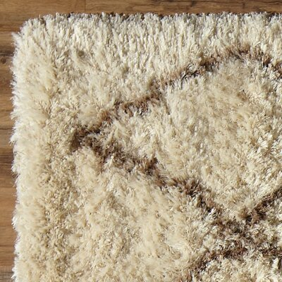 Birch Lane Evelyn Shag Rug
