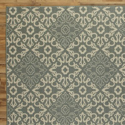 Lydia Sage Indoor/Outdoor Rug Rug Size: 53 x 76