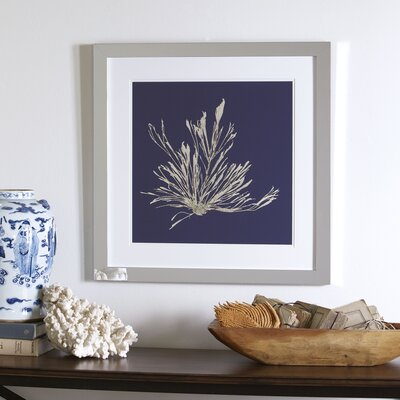 Sea Floor Framed Print III